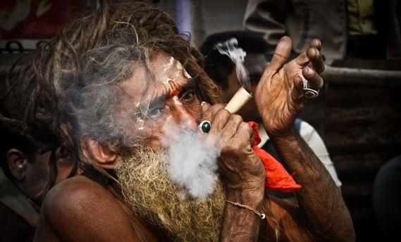 Top 10 idealnych miejsc urlopowych dla koneserów marihuany, GanjaFarmer, Ganja Farmer