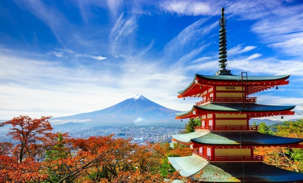 Kannabis w Japonii, GanjaFarmer, Ganja Farmer