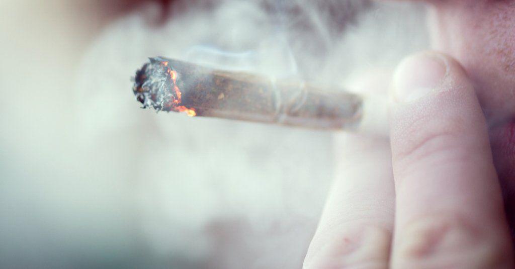 Czynniki wpływające na szybkość spalania jointa., GanjaFarmer, Ganja Farmer
