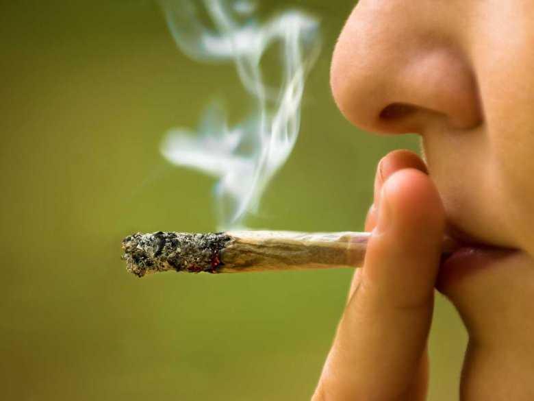 Krzyk zdradził 6kg cannabisu   wszystko na własny użytek, GanjaFarmer, Ganja Farmer