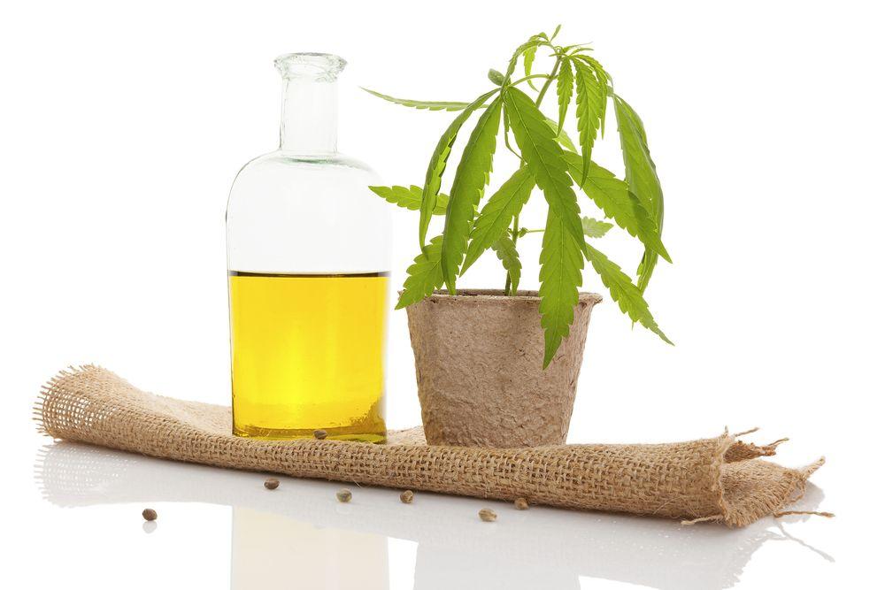 Efekty uboczne oleju konopnego, GanjaFarmer, Ganja Farmer