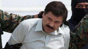 El Chapo wydany Amerykanom, GanjaFarmer, Ganja Farmer