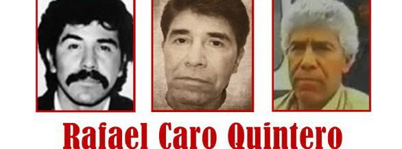 Złota rączka do konopi   historia Rafael Caro Quintero, GanjaFarmer, Ganja Farmer
