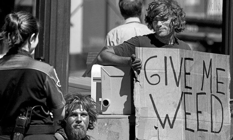 Waszyngton: Nieznajomi Podarowali 1,7kg Marihuany Placówce Pomocy Społecznej, GanjaFarmer, Ganja Farmer