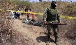 Meksyk: Policja znalazła części ciała zapakowane w reklamówki, GanjaFarmer, Ganja Farmer