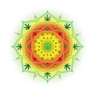 Cannabis i medytacja, GanjaFarmer, Ganja Farmer