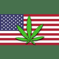 Amerykanie rozkupują w Nevadzie sklepy z cannabisem, GanjaFarmer, Ganja Farmer
