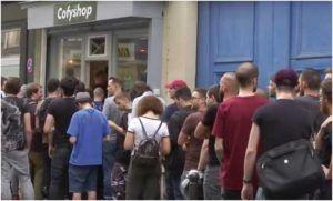 "Boom CBD ogarnął Francję: pierwszy ""Cofyshop"" w Paryżu, GanjaFarmer, Ganja Farmer"