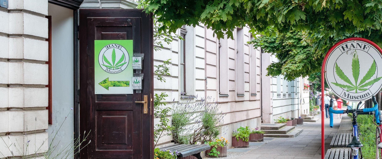 Muzeum Konopi w Berlinie Kończy 25 lat, GanjaFarmer, Ganja Farmer